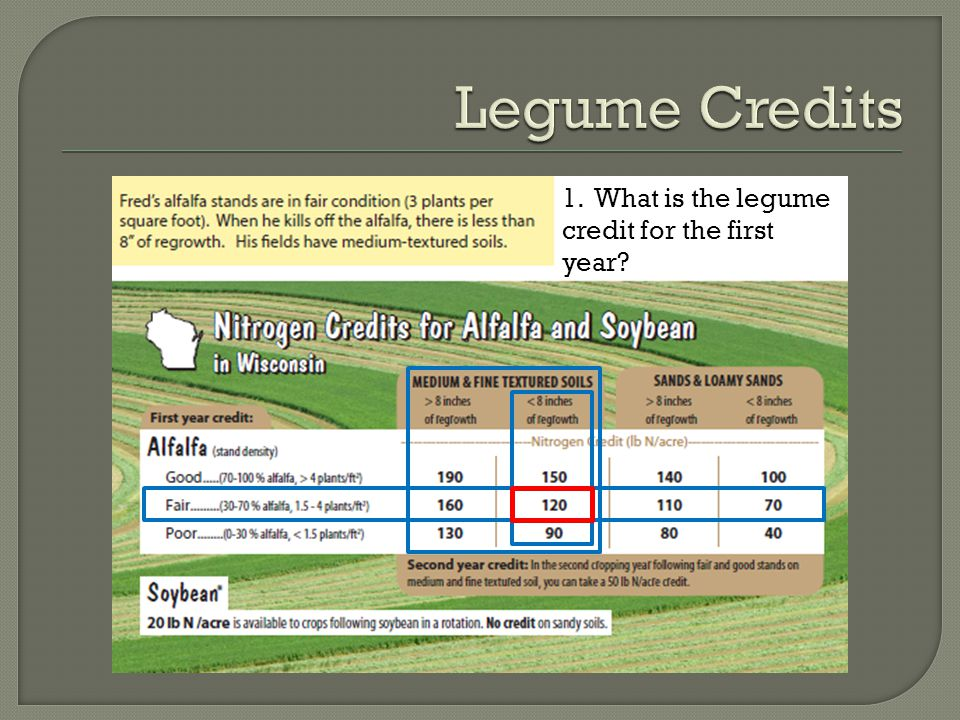 1. What is the legume credit for the first year