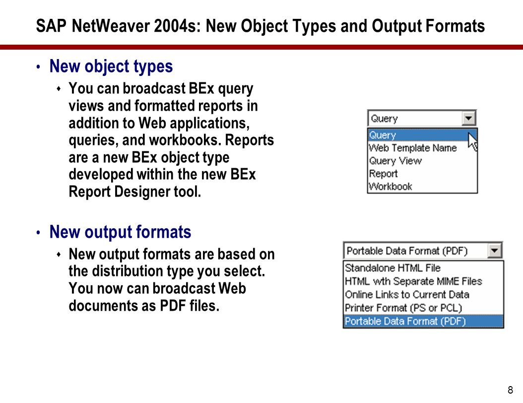 2007 wellesley information services all rights reserved dr 8 sap netweaver 2004s new object types and output formats new object types you baditri Images