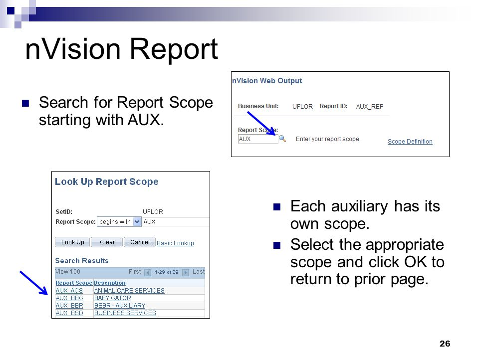 nVision Report Search for Report Scope starting with AUX. 26 Each auxiliary has its own scope. Select the appropriate scope and click OK to return to