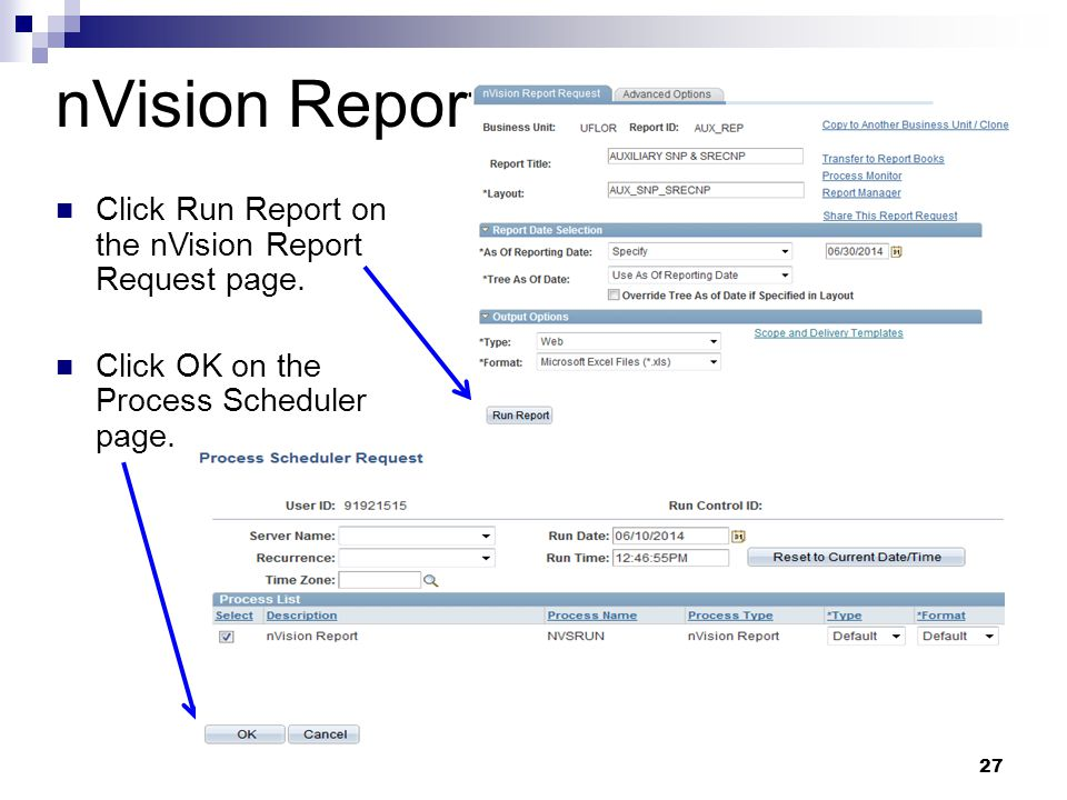 nVision Report Click Run Report on the nVision Report Request page.