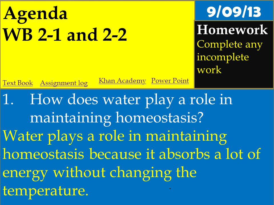 Agenda WB 2-1 and 2-2 Homework Complete any incomplete work 1.How does water play a role in maintaining homeostasis? Water plays a role in maintaining