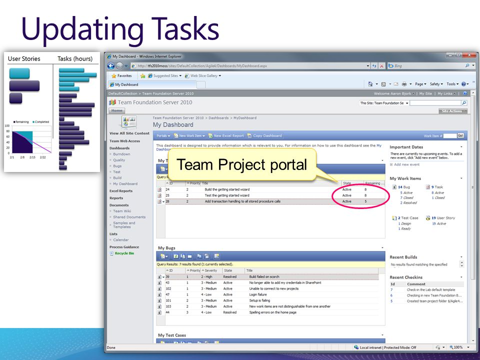 Updating Tasks Team Project portal