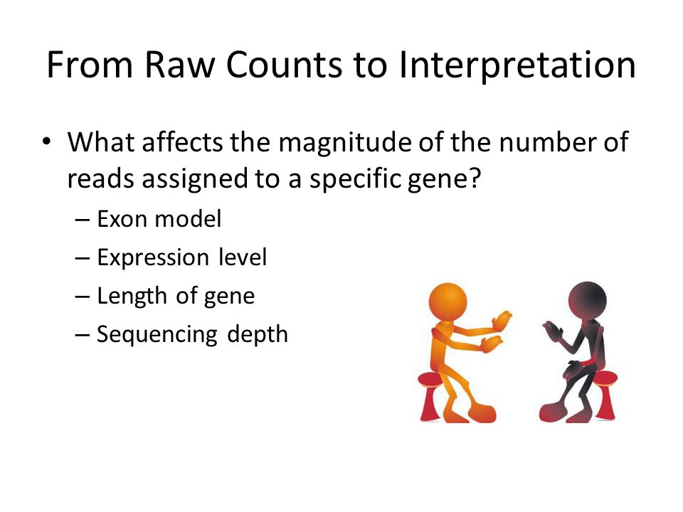From Raw Counts to Interpretation What affects the magnitude of the number of reads assigned to a specific gene.