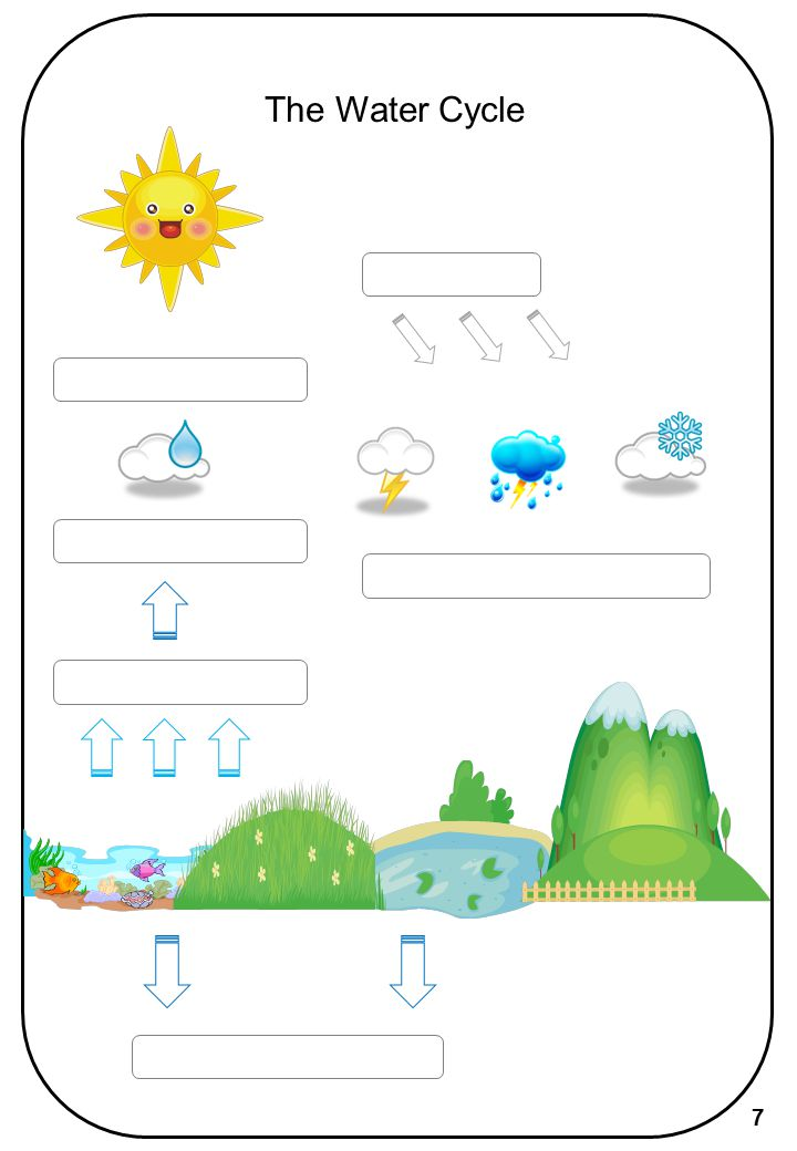 The Water Cycle 7
