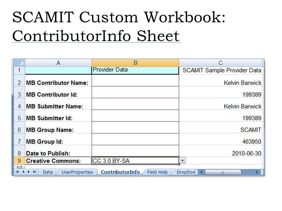 SCAMIT Custom Workbook: ContributorInfo Sheet