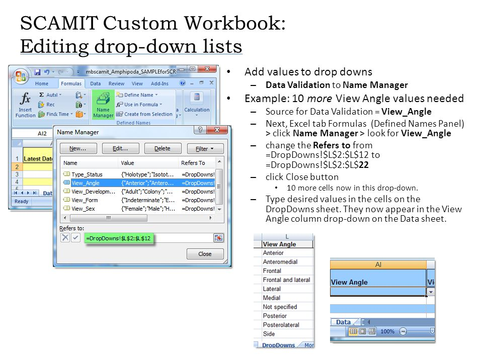 SCAMIT Custom Workbook: Editing drop-down lists Add values to drop downs – Data Validation to Name Manager Example: 10 more View Angle values needed –