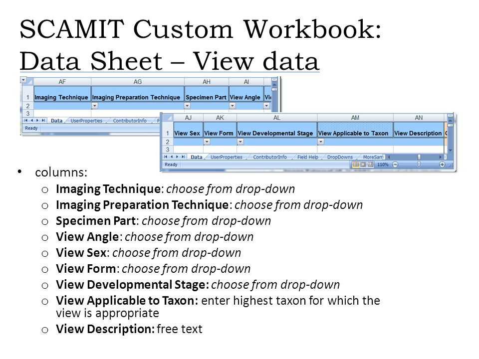 SCAMIT Custom Workbook: Data Sheet – View data columns: o Imaging Technique: choose from drop-down o Imaging Preparation Technique: choose from drop-d