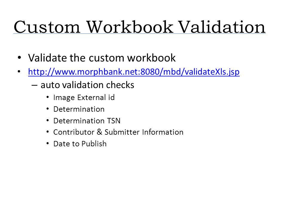 Custom Workbook Validation Validate the custom workbook http://www.morphbank.net:8080/mbd/validateXls.jsp – auto validation checks Image External id D