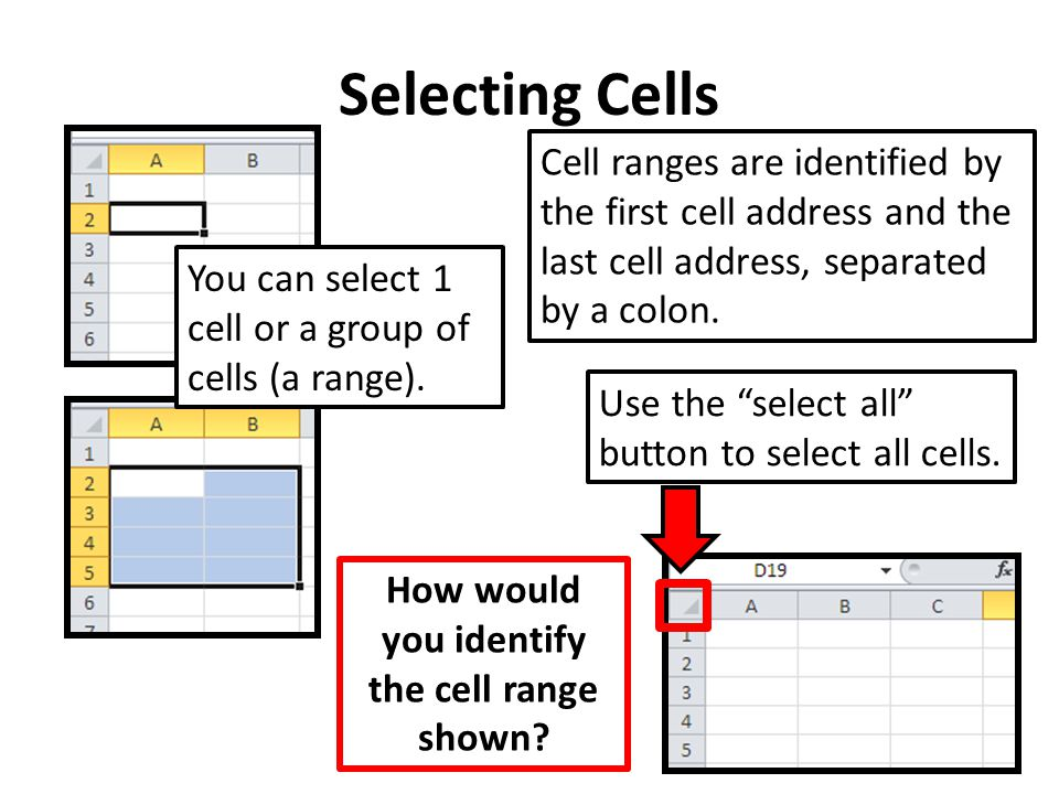 "Selecting Cells You can select 1 cell or a group of cells (a range). Use the ""select all"" button to select all cells. Cell ranges are identified by th"