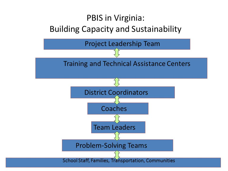 PBIS in Virginia: Building Capacity and Sustainability School Staff, Families, Transportation, Communities Project Leadership Team Training and Technical Assistance Centers District Coordinators Coaches Team Leaders Problem-Solving Teams