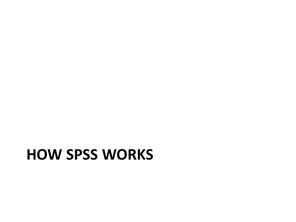 HOW SPSS WORKS