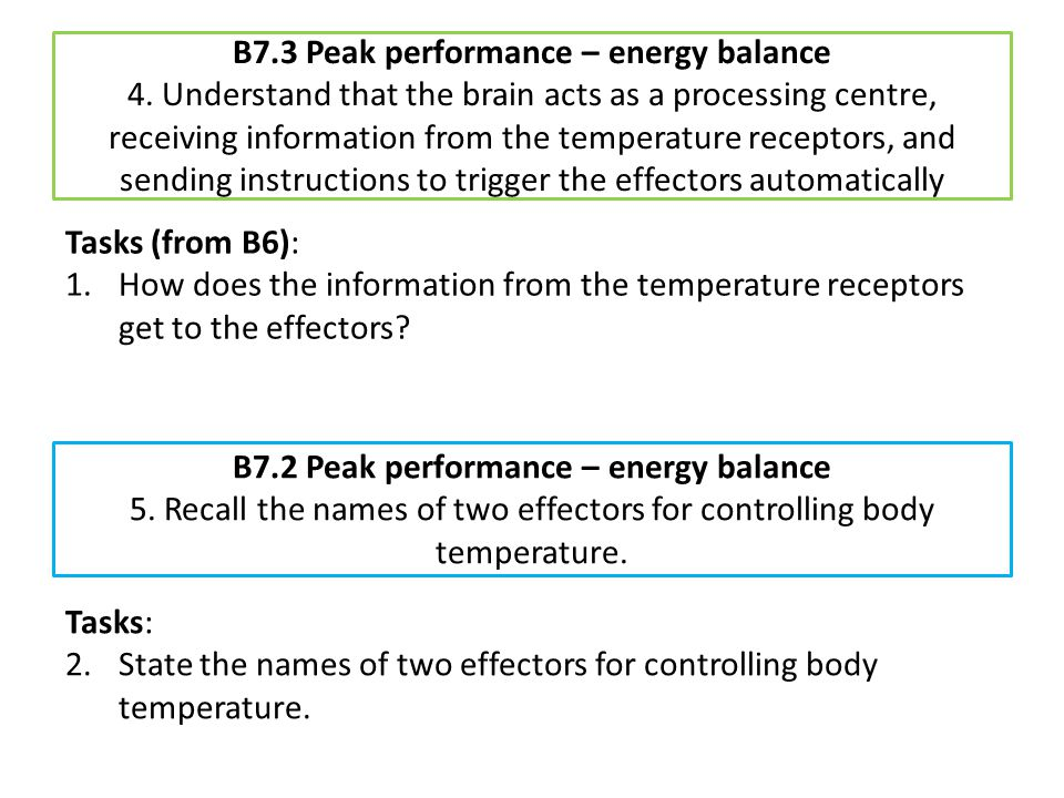 B7.3 Peak performance – energy balance 4. Understand that the brain acts as a processing centre, receiving information from the temperature receptors,