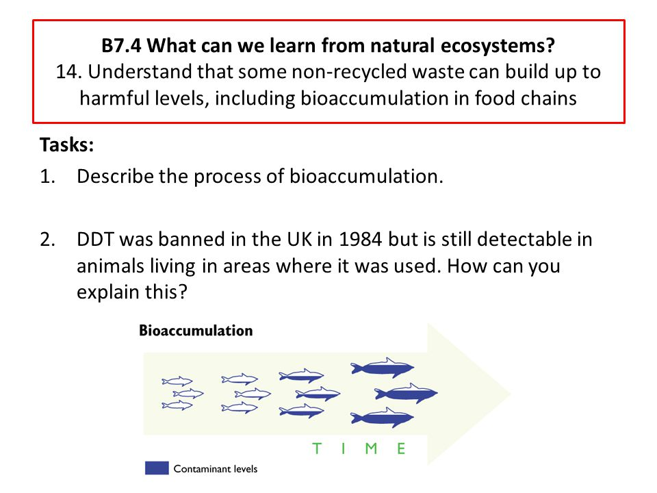 B7.4 What can we learn from natural ecosystems? 14. Understand that some non-recycled waste can build up to harmful levels, including bioaccumulation