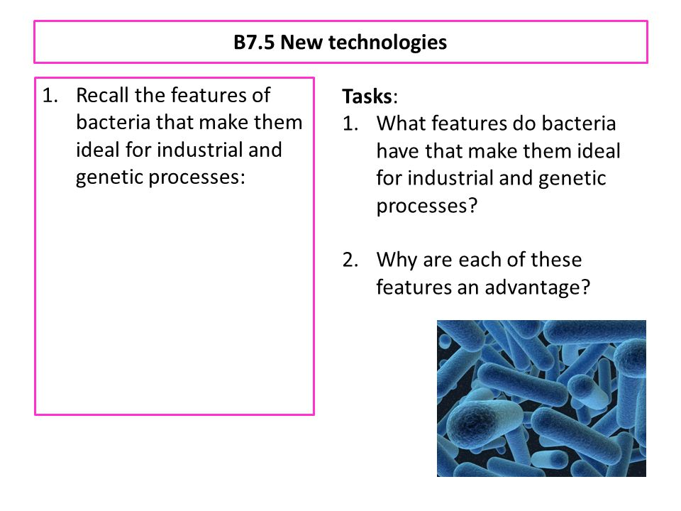 B7.5 New technologies 1.Recall the features of bacteria that make them ideal for industrial and genetic processes: a.rapid reproduction b.presence of