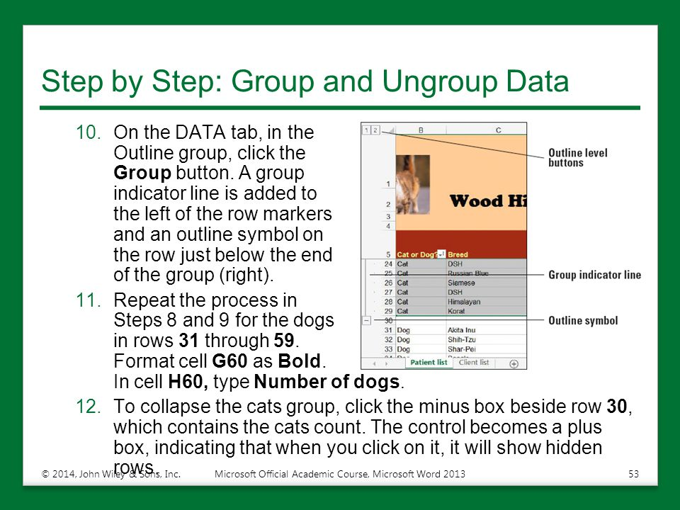 Step by Step: Group and Ungroup Data 10.On the DATA tab, in the Outline group, click the Group button. A group indicator line is added to the left of
