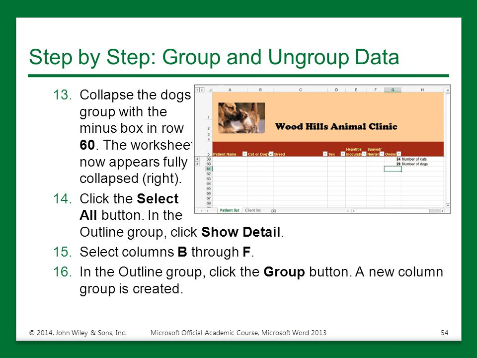 Step by Step: Group and Ungroup Data 13.Collapse the dogs group with the minus box in row 60. The worksheet now appears fully collapsed (right). 14.Cl