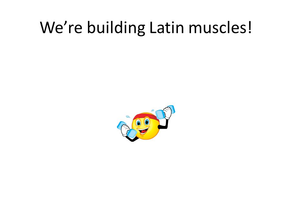 We're building Latin muscles!