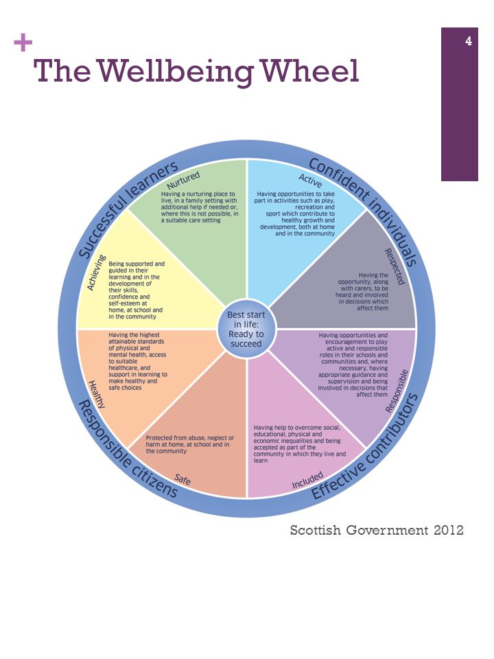 + The Wellbeing Wheel 4 Scottish Government 2012