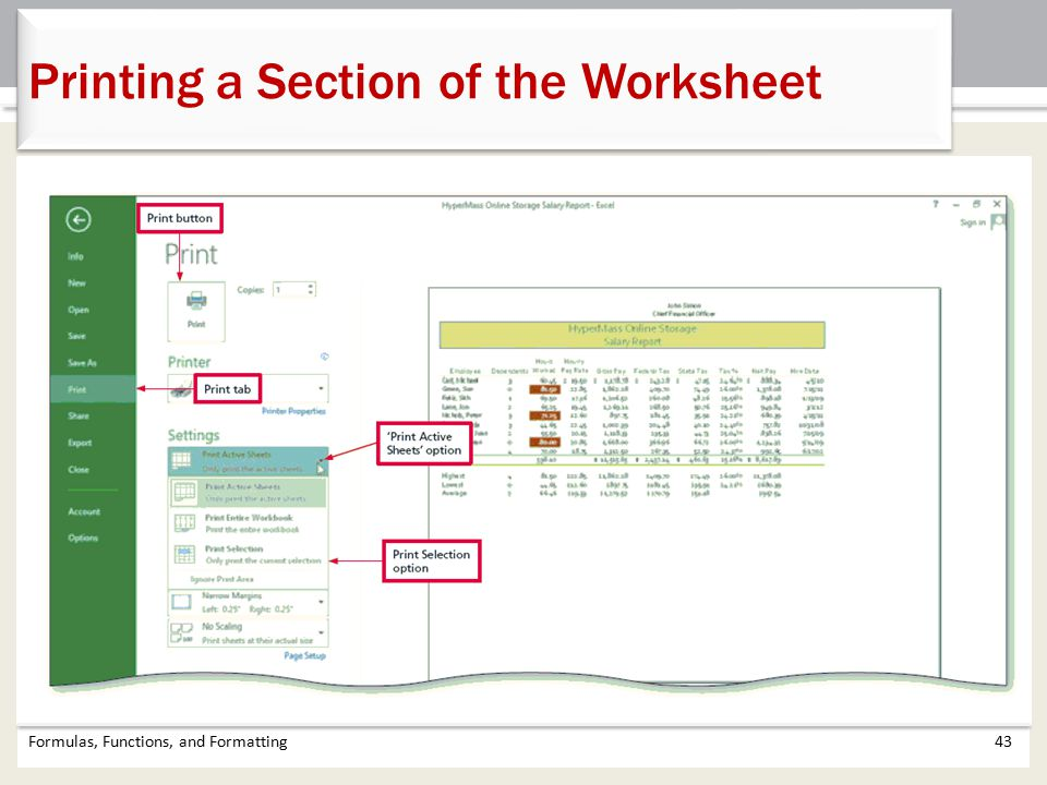 Formulas, Functions, and Formatting43 Printing a Section of the Worksheet
