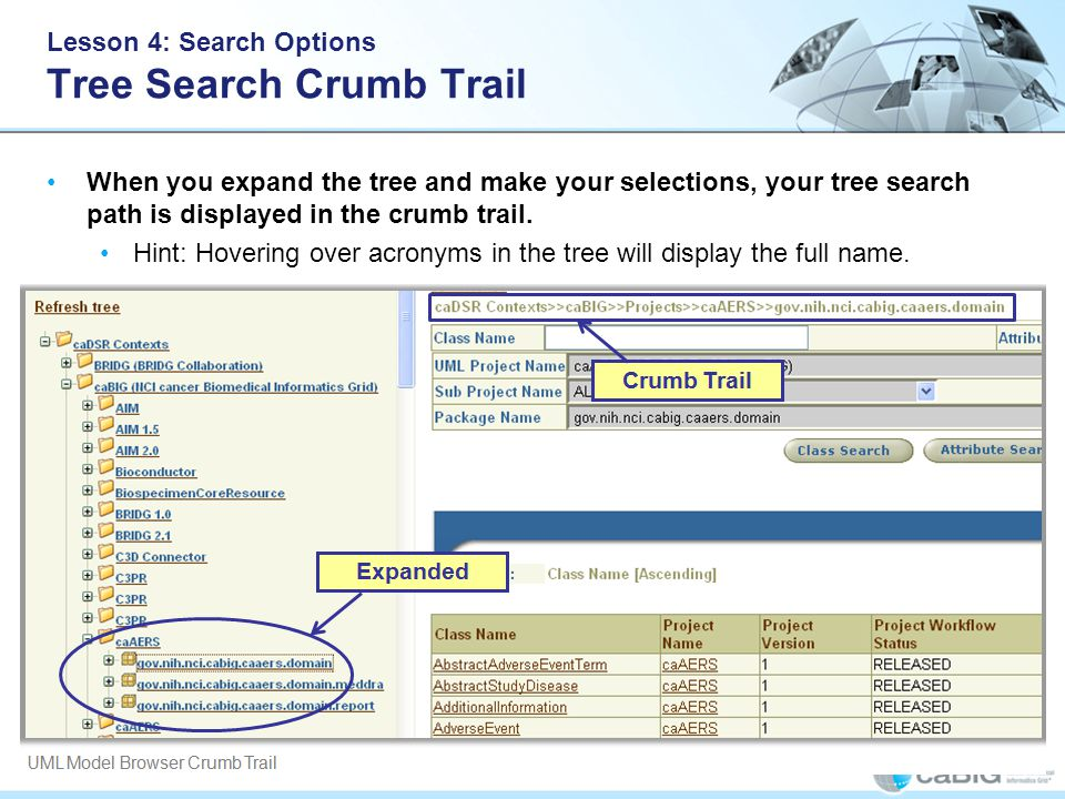 Lesson 4: Search Options Tree Search Crumb Trail When you expand the tree and make your selections, your tree search path is displayed in the crumb trail.