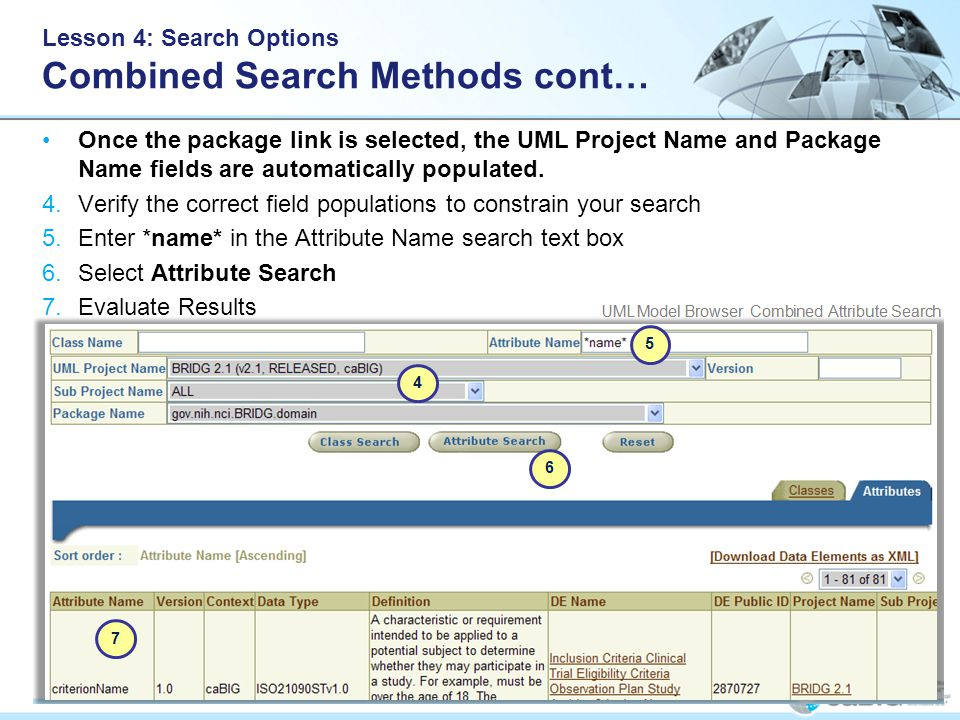 Lesson 4: Search Options Combined Search Methods cont… Once the package link is selected, the UML Project Name and Package Name fields are automatically populated.