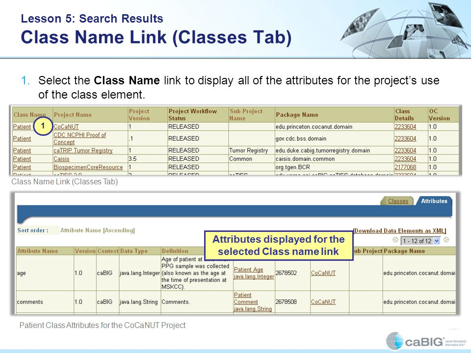 Lesson 5: Search Results Class Name Link (Classes Tab) 1.Select the Class Name link to display all of the attributes for the project's use of the class element.