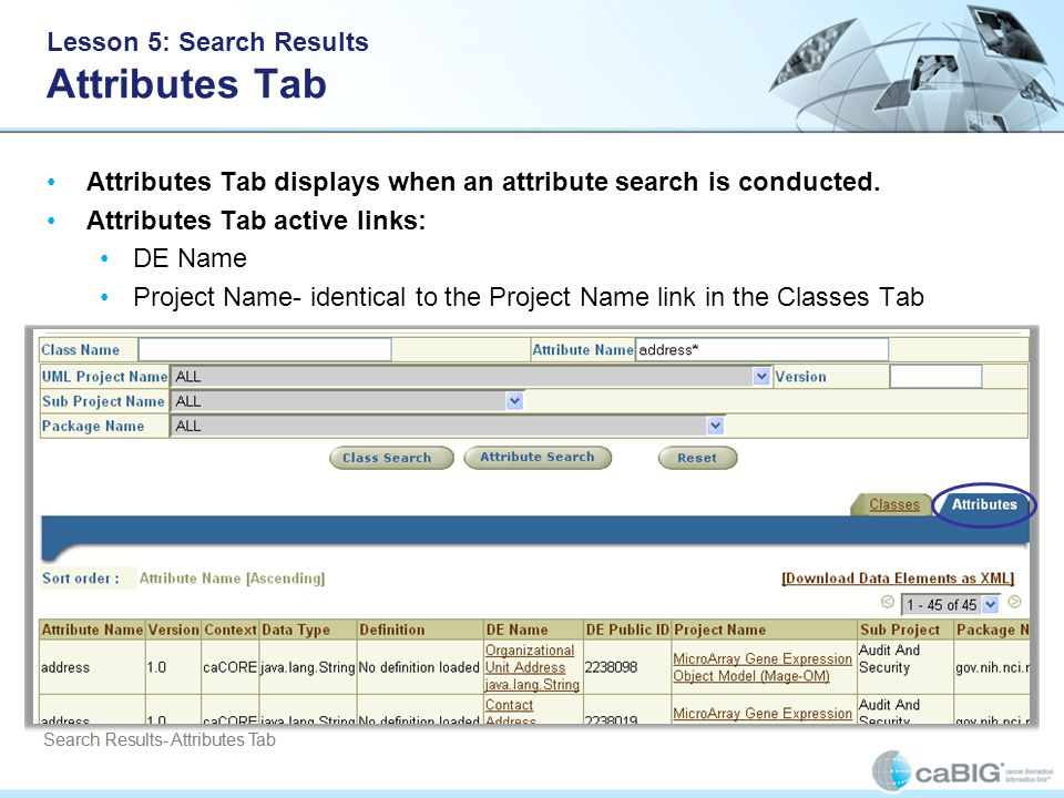 Lesson 5: Search Results Attributes Tab Attributes Tab displays when an attribute search is conducted.