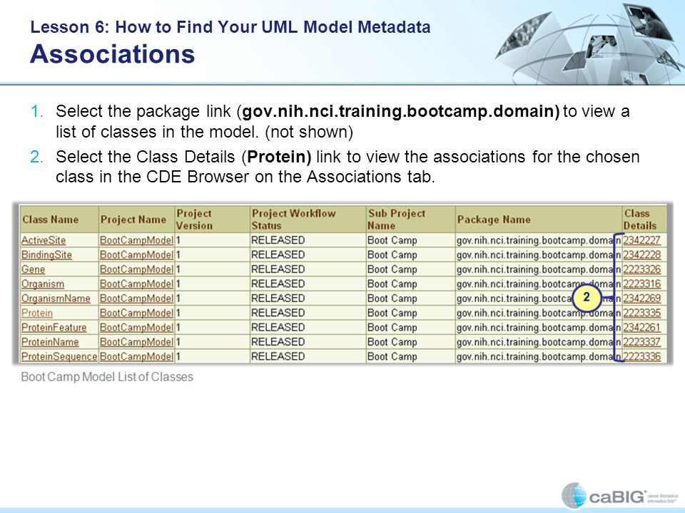 Lesson 6: How to Find Your UML Model Metadata Associations 1.Select the package link (gov.nih.nci.training.bootcamp.domain) to view a list of classes in the model.