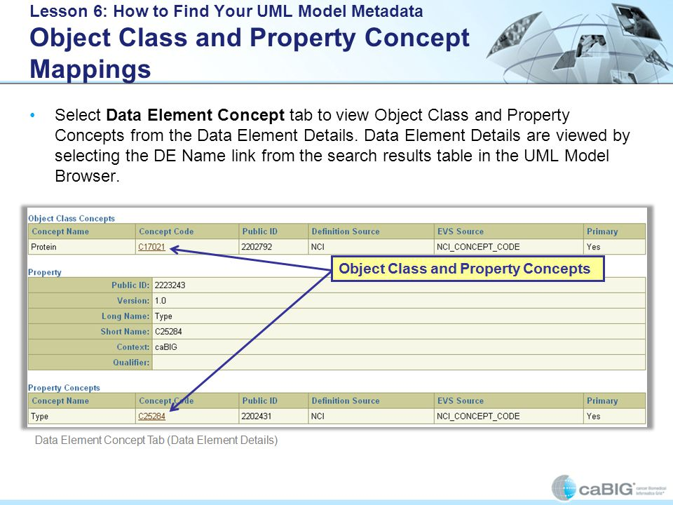 Lesson 6: How to Find Your UML Model Metadata Object Class and Property Concept Mappings Select Data Element Concept tab to view Object Class and Property Concepts from the Data Element Details.