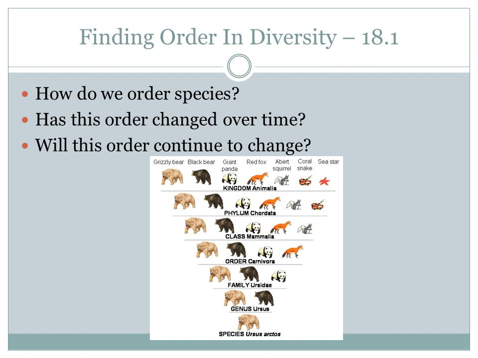 Finding Order In Diversity – 18.1 How do we order species? Has this order changed over time? Will this order continue to change?