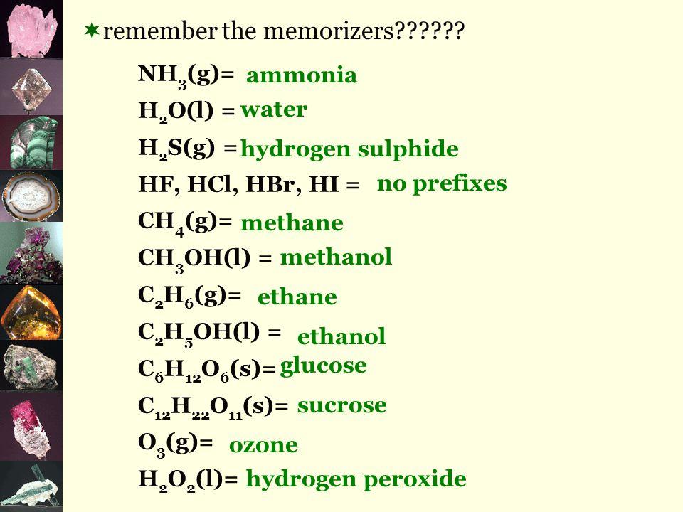  remember the memorizers?????.
