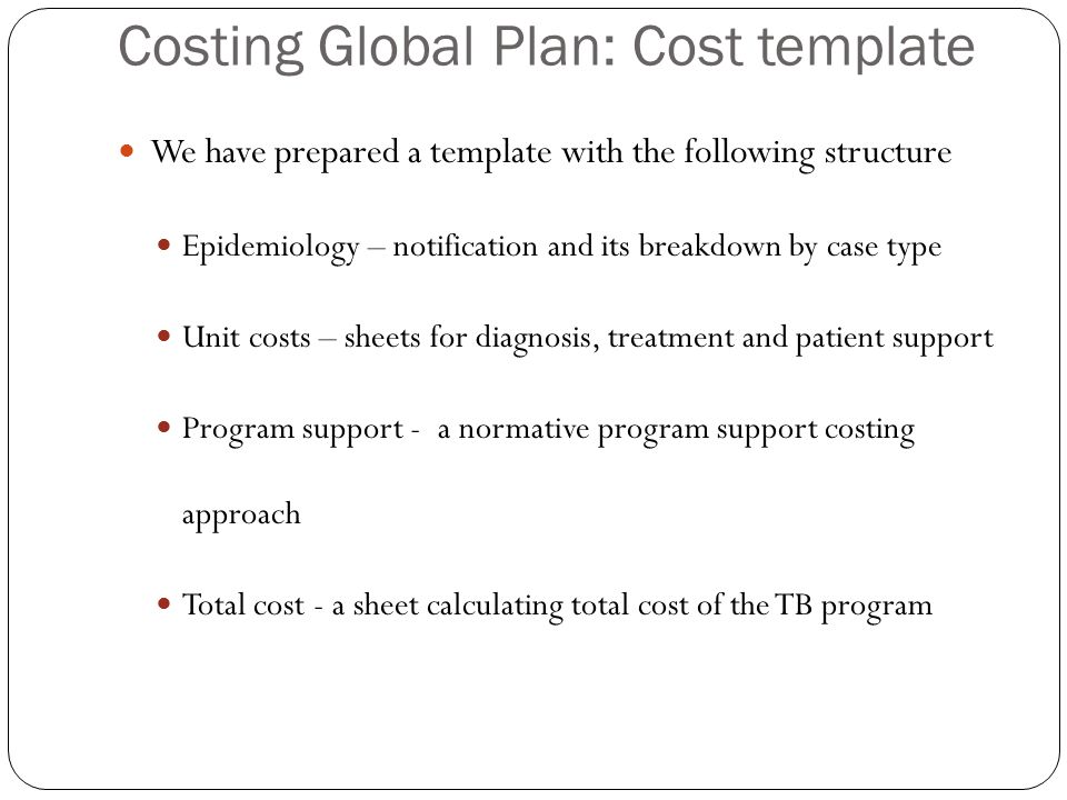 Costing Global Plan: Cost template We have prepared a template with the following structure Epidemiology – notification and its breakdown by case type Unit costs – sheets for diagnosis, treatment and patient support Program support - a normative program support costing approach Total cost - a sheet calculating total cost of the TB program