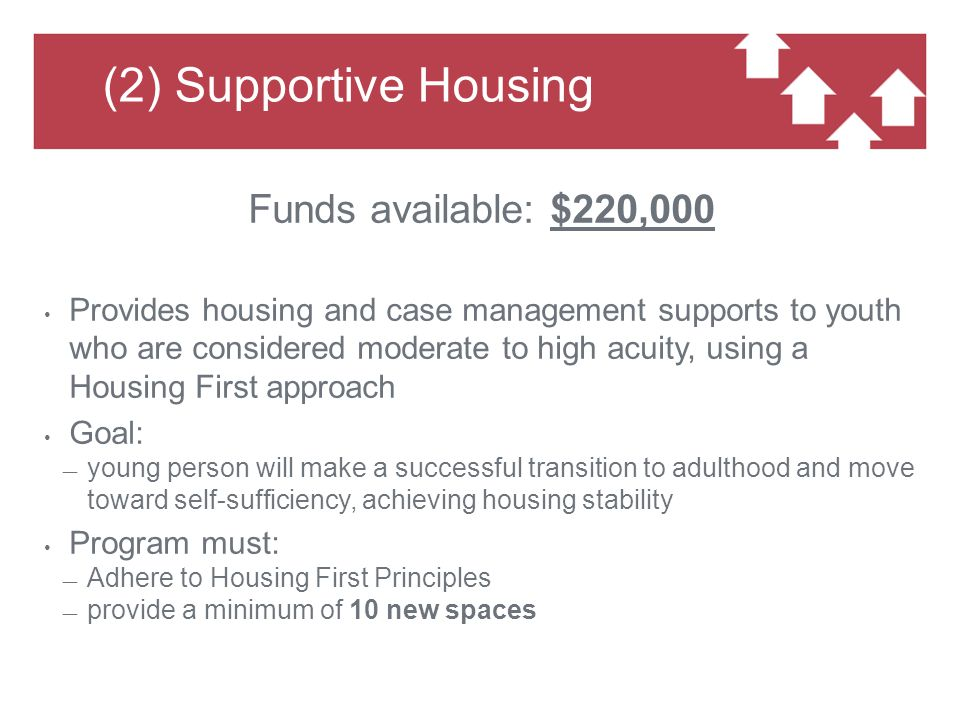(3) Mental Health Supports Funds available: $175,000 Provide clinical supports to homeless youth experiencing mental health concerns who are engaged with CHF-funded youth serving housing programs Support services may be provided in a consultative capacity to the HF Case Manager engaged with the youth Goal: support youth so they can successfully return home or maintain a HF placement All referrals made through CAA Youth Placement Committee Minimum caseload of 1:10; expected: twenty new spaces