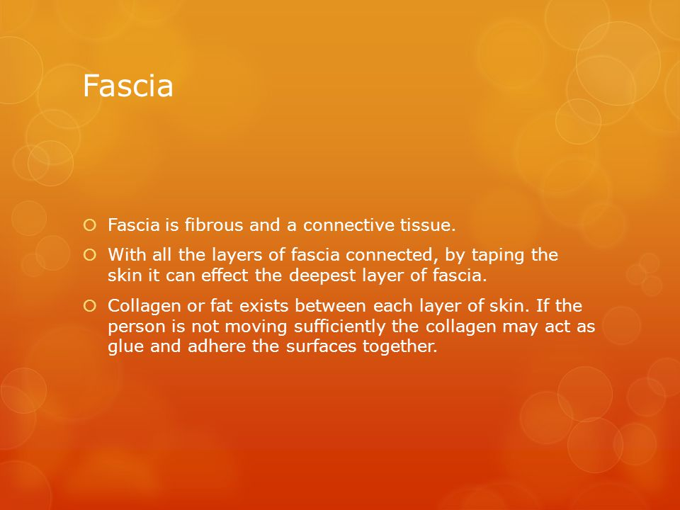 Fascia  Fascia is fibrous and a connective tissue.