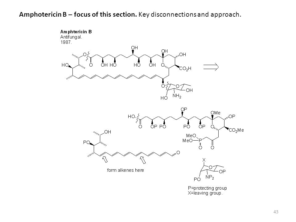 43 Amphotericin B – focus of this section. Key disconnections and approach.