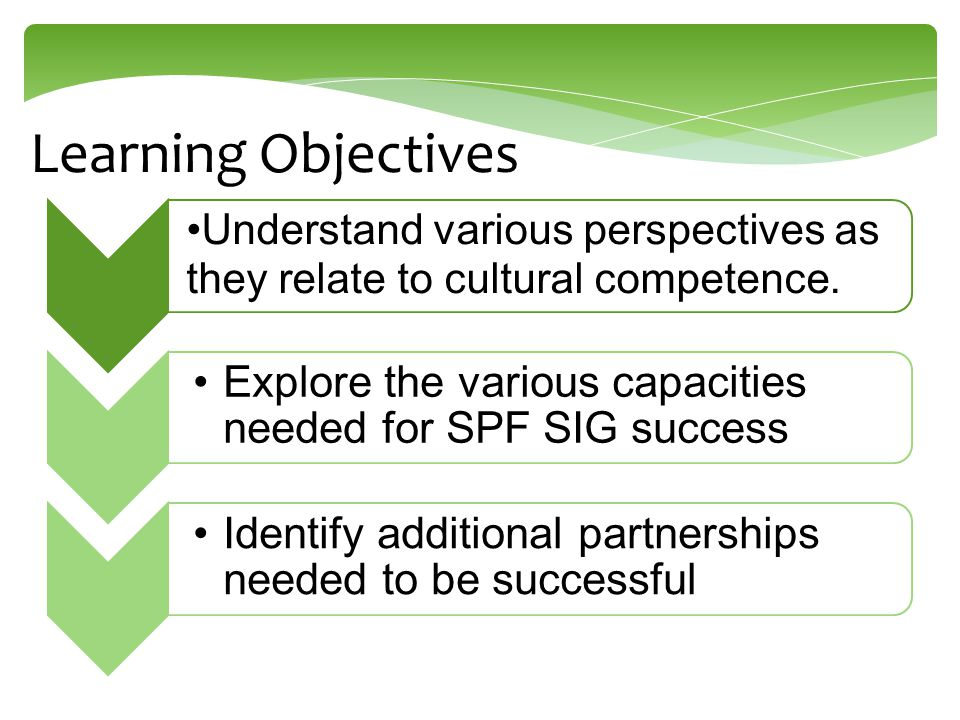 Learning Objectives Understand various perspectives as they relate to cultural competence. Explore the various capacities needed for SPF SIG success I