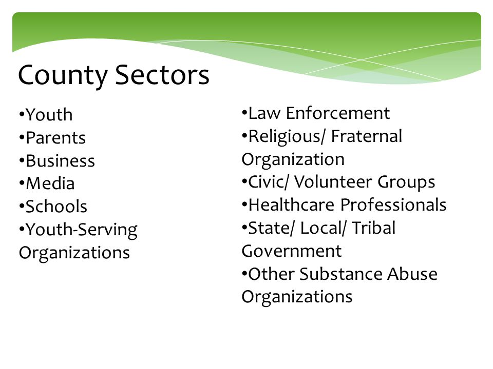 County Sectors Youth Parents Business Media Schools Youth-Serving Organizations Law Enforcement Religious/ Fraternal Organization Civic/ Volunteer Gro