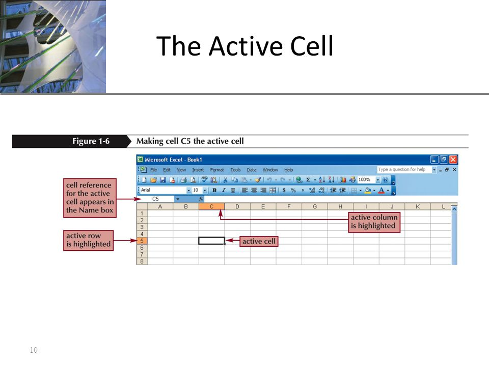 XP The Active Cell 10