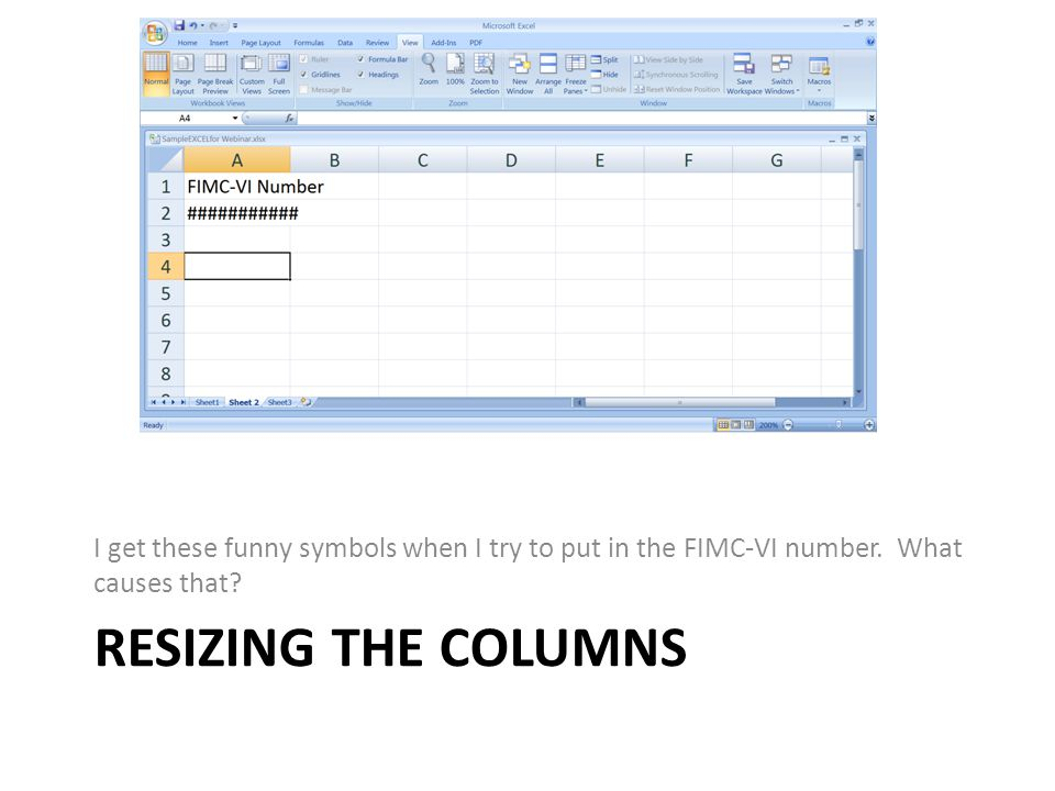 RESIZING THE COLUMNS I get these funny symbols when I try to put in the FIMC-VI number.