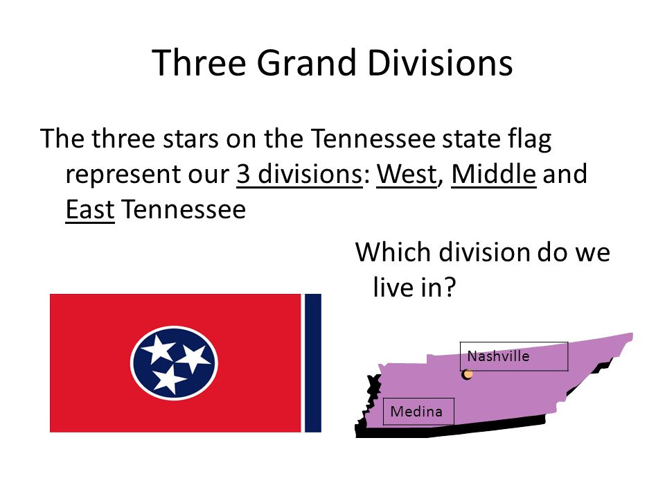 Three Grand Divisions The three stars on the Tennessee state flag represent our 3 divisions: West, Middle and East Tennessee Which division do we live in.