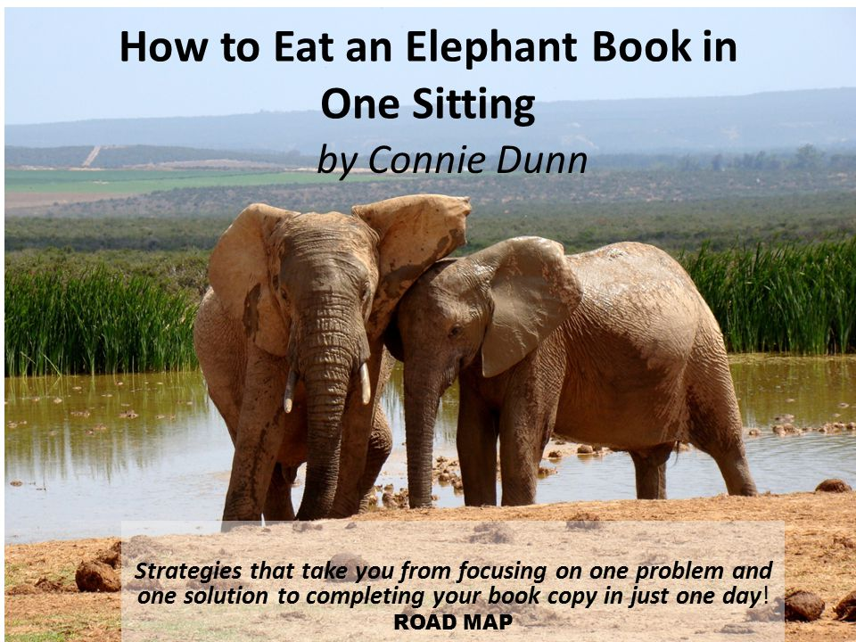 How to Eat an Elephant Book in One Sitting Strategies that take you from focusing on one problem and one solution to completing your book copy in just one day.