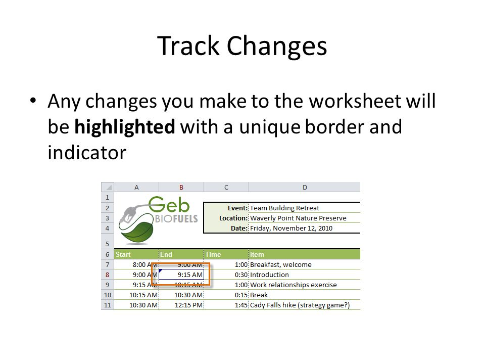 Track Changes Any changes you make to the worksheet will be highlighted with a unique border and indicator