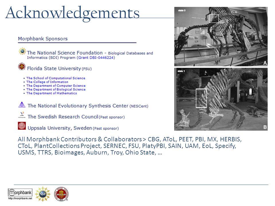 Acknowledgements All Morphbank Contributors & Collaborators > CBG, AToL, PEET, PBI, MX, HERBIS, CToL, PlantCollections Project, SERNEC, FSU, PlatyPBI, SAIN, UAM, EoL, Specify, USMS, TTRS, Bioimages, Auburn, Troy, Ohio State, …