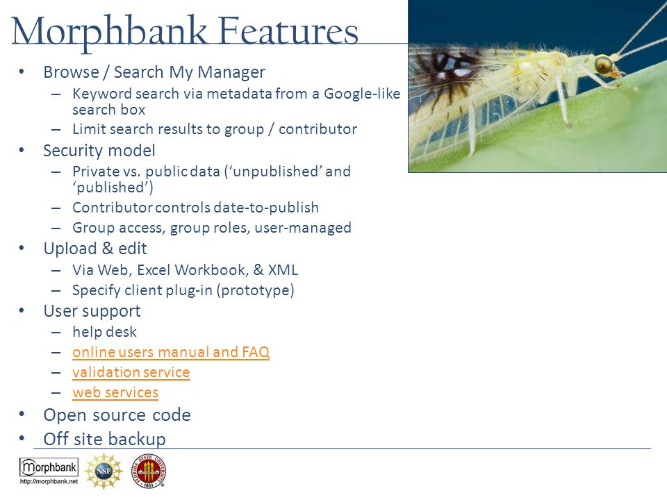 Morphbank Features Browse / Search My Manager – Keyword search via metadata from a Google-like search box – Limit search results to group / contributor Security model – Private vs.