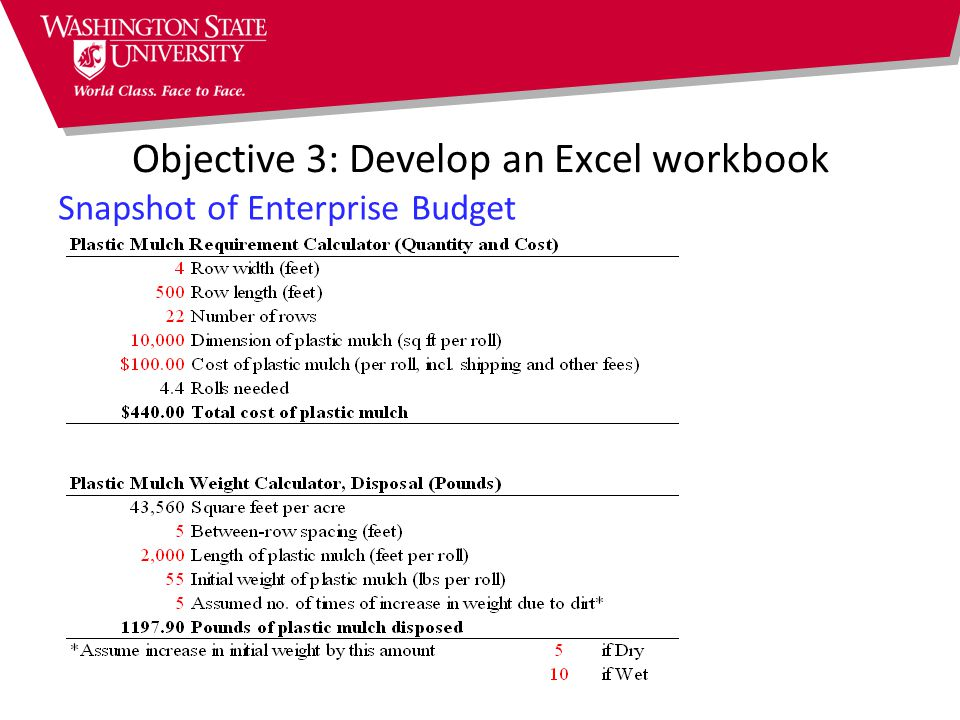 Objective 3: Develop an Excel workbook Snapshot of Enterprise Budget