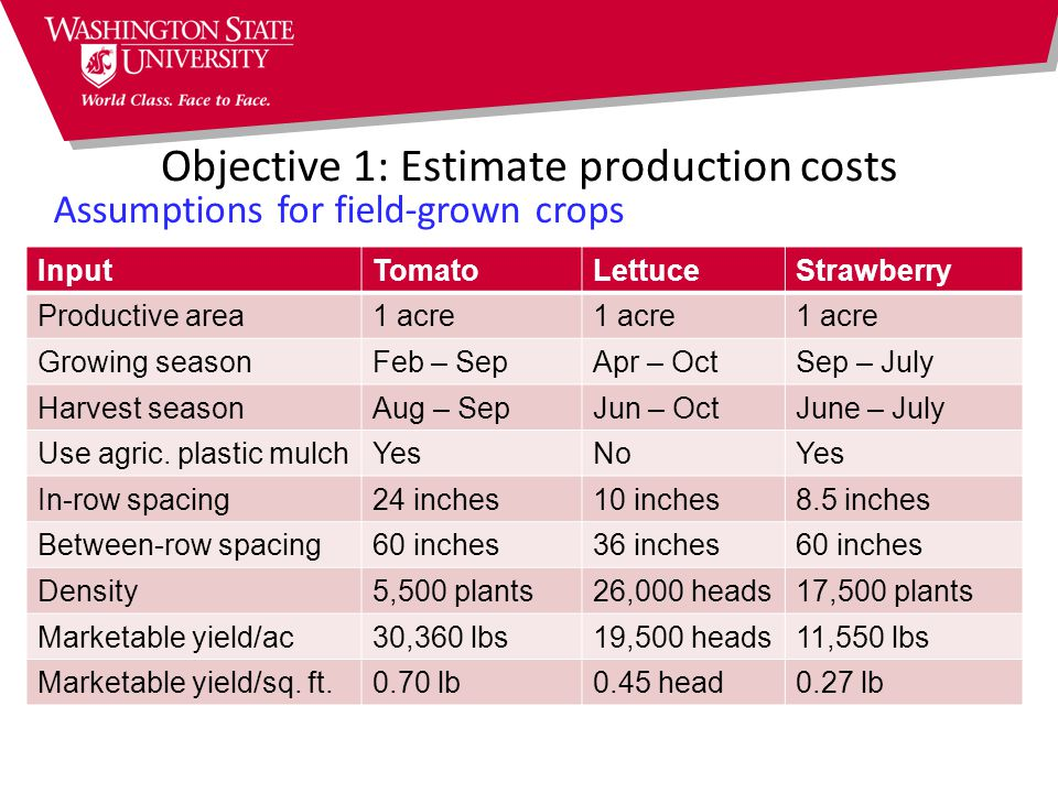 Objective 1: Estimate production costs Assumptions for field-grown crops InputTomatoLettuceStrawberry Productive area1 acre Growing seasonFeb – SepApr – OctSep – July Harvest seasonAug – SepJun – OctJune – July Use agric.