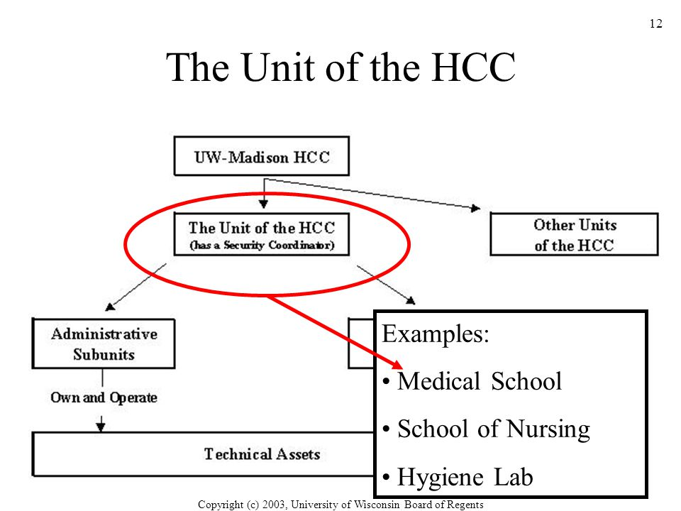 Copyright (c) 2003, University of Wisconsin Board of Regents 12 The Unit of the HCC Examples: Medical School School of Nursing Hygiene Lab
