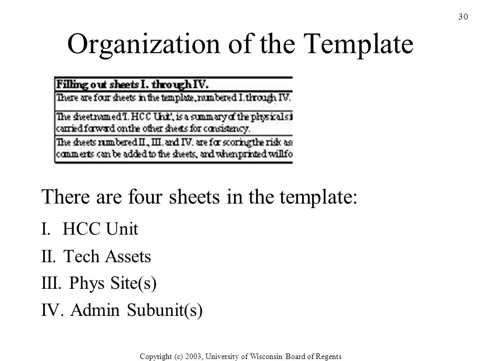 Copyright (c) 2003, University of Wisconsin Board of Regents 30 Organization of the Template There are four sheets in the template: I.