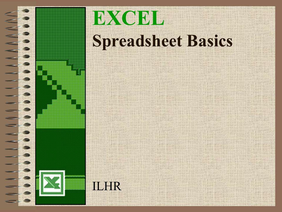 EXCEL Spreadsheet Basics ILHR