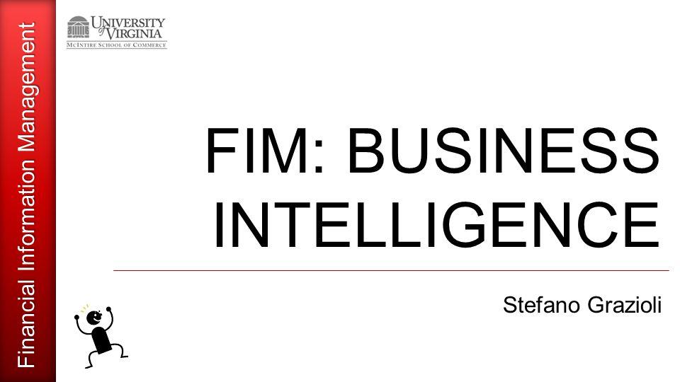 Financial Information Management FIM: BUSINESS INTELLIGENCE Stefano Grazioli